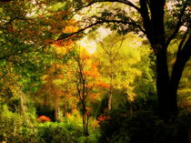 Herbstgemälde by Ulrike Ilse Brück