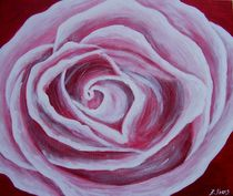 Rose by Bärbel Knees