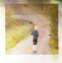 Herbstimpressionen von Katharina Kabara