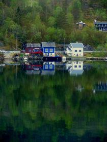 Irgendwo in Norwegen von Renée König