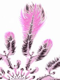 Fraktale Pflanze - florales Design in Pink und Weiss von Matthias Hauser
