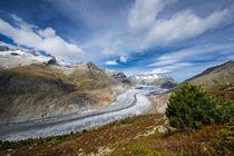 Aletsch Gletscher von Matthias Hauser