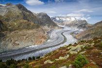 Großer Aletschgletscher Schweiz von Matthias Hauser