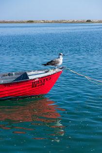 Bird on a Red Boat von Kelly Love