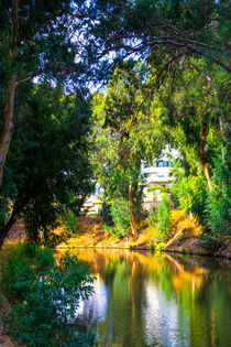 View of summer park Yarkon in Tel Aviv by slavamalai