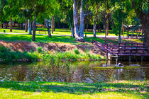 View of summer park by slavamalai