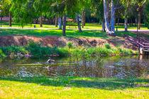 View of summer park von slavamalai
