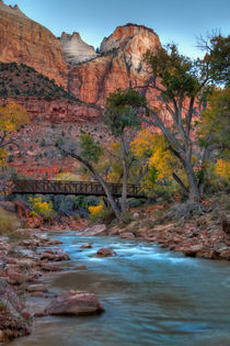 Zion National Park, Utah, USA by Douglas Pulsipher