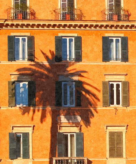 Palm-tree-reflection