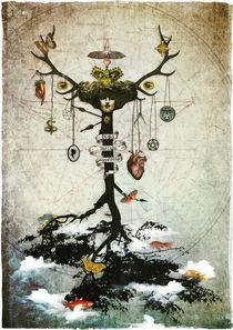 Supernatural-strangefruit-c-sybillesterk