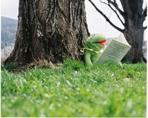 Kermit wanna Know by Wurst &  Feinkost