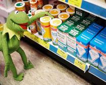 Kermit wanna Know Pt.3 by Wurst &  Feinkost