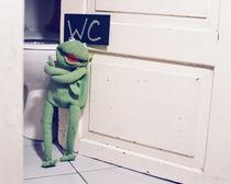 Kermit wanna Know Pt. 2 by Wurst &  Feinkost