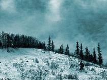 Wintermood7