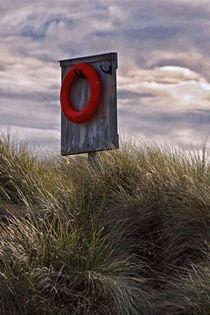 Life Preserver by David Pringle