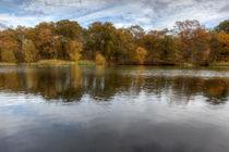 Autumn Ponds - 1 von David Tinsley