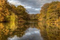 Autumn Ponds - 2 by David Tinsley