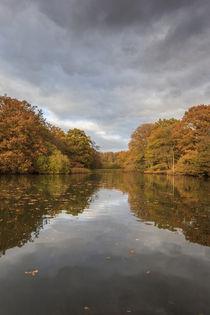 Autumn Ponds - 3 von David Tinsley