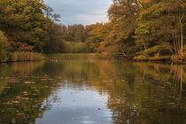 Autumn Ponds - 4 von David Tinsley
