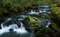 Autumn river by steveland