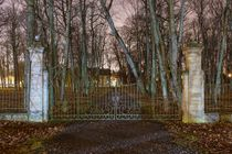 Palace Gates by Tanel Teemusk