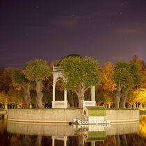 Swan Lake von Tanel Teemusk
