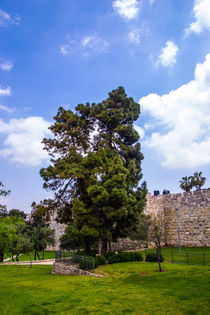 The wall of old Jerusalem. von slavamalai