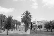 Jerusalem streets  by slavamalai