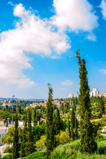 View of Jerusalem from old city von slavamalai