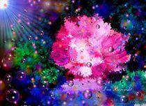 Blumenparadies von Eva Borowski