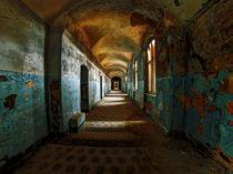 lost beauty III by Jens Schneider
