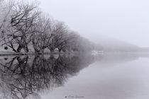 La niebla del Lago von Víctor Bautista