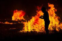 Fire - Hogueras by Víctor Bautista