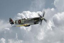 Polish Spitfire Ace by James Biggadike