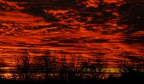 burning sky III von joespics