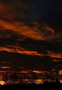 awakening III von joespics