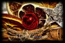 Merry Christmas by mirjam-otto-bildwerk