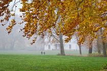 Herbst im Jenischpark von Beate Zoellner