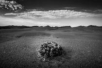 Round Ovoo by Schoo Flemming