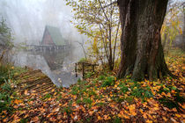 Cottage-on-the-water-in-autumn