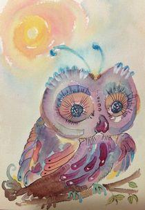 Lucia-owl
