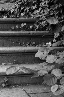 verwunschene Treppe von STEFARO .