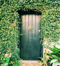 The Green Door by O.L.Sanders Photography