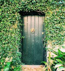 The Green Door von O.L.Sanders Photography