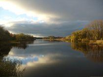 Am Teich von konni