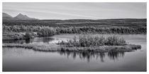 Tundra pond reflections von Priska  Wettstein