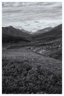 Tundra Valley von Priska  Wettstein