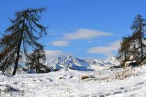 Winterlandschaft by Jens Berger