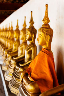 A line of Buddhas. by Tom Hanslien