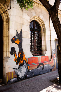 Urban Cat. von Tom Hanslien